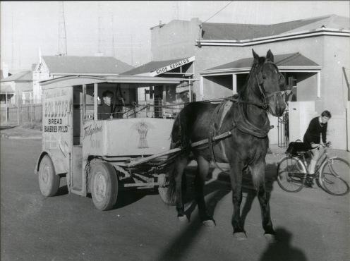 Gold Top Horse & Cart
